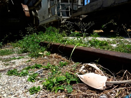 Arriaga- One half of a bra is seen at the tracks in Arriaga where the notorious train, La Bestia, begins. This is one article of clothing, out of countless, found along the route. August 3rd, 2015 photo by Janice Amaya