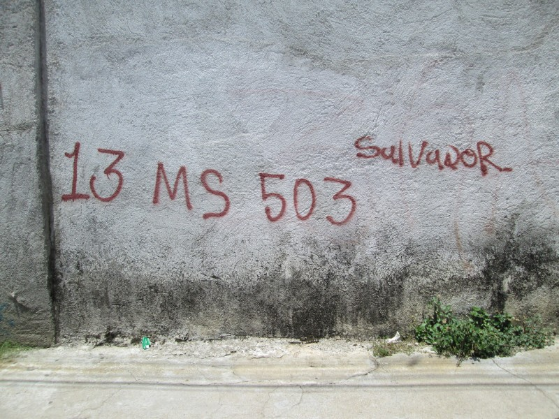 Mara Salvatrucha graffiti on a wall near a train station. Arriaga, México. 03 August 2015. Photo by Diana Gluck.